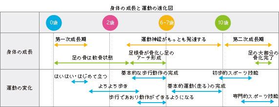身長の成長と運動の進化図
